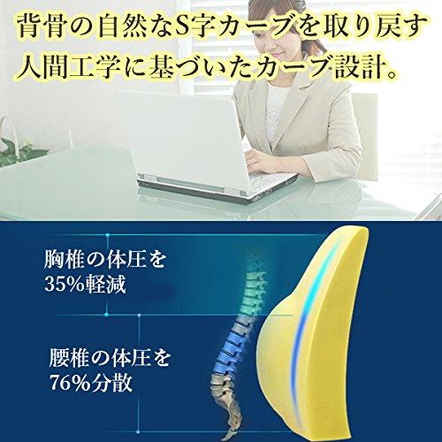 iniko 低反発シートクッション ランバーサポート 腰椎背当て S字カーブ 維持サポート仕様 (ブラック)